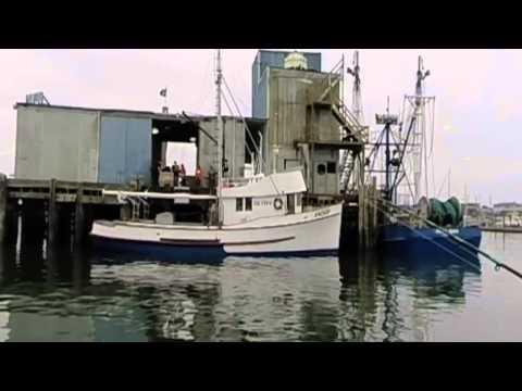 Salmon And Bottomfishing In Westport,Wa On The
