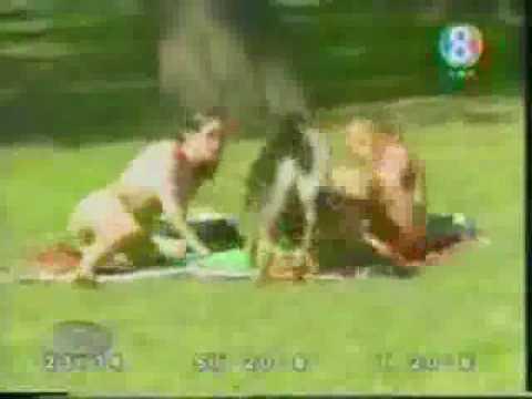 Mạng Xây Dựng - Video & Media - Video Clip - Video Clip hài - Butt Sniffing Dog.flv