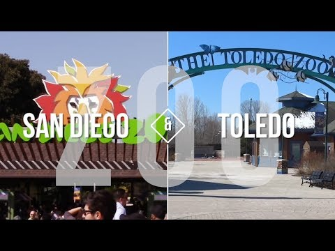 TOLEDO | ON THE MAP: San Diego & the Zoo