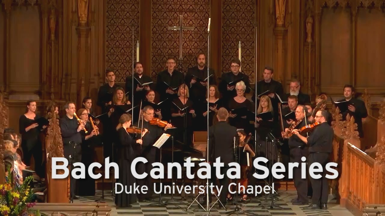 What is cantata 94