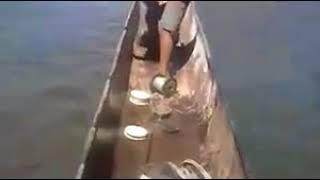 छोटे बच्चे का मछली पकड़ना