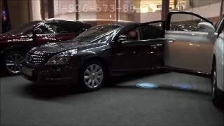 Штатная подсветка в двери с логотипом Ford Форд