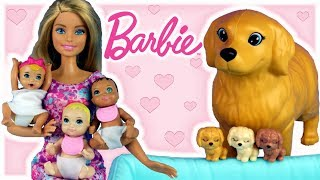 barbie market