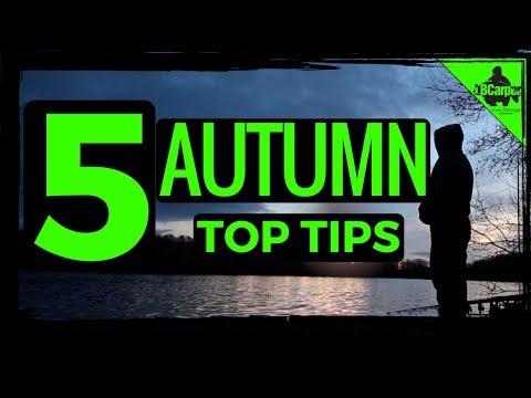 5 CARP FISHING AUTUMN TIPS 😀