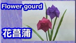 折り紙Origamiの簡単花ショウブの花~折り方解説付き~ How to fold a Flower gourd