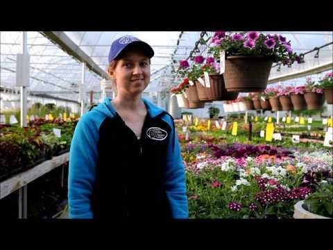 Fertilizer at Green Valley Garden Centre