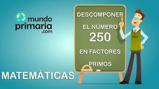 Descomposición del número 250 en factores primos