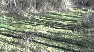 Dayhike: Hagerman National Wildlife Refuge
