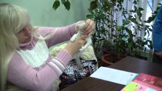 Бирманский котенок системы PCA Мирей Лезе Парлан
