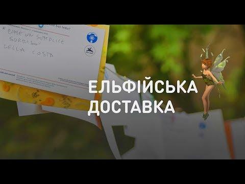 Телеканал ТВі | TVi: Эльфийская доставка