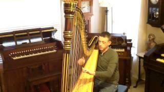 Harp: Sérénade Mélancolique (Feuilles d