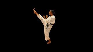 Janice Francis Irwin European & World Karate Champion