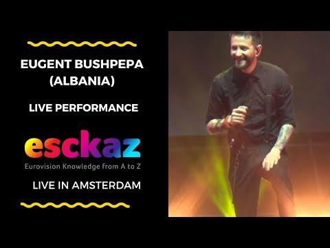 ESCKAZ in Amsterdam: Eugent Bushpepa (Albania) - Mall
