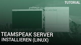Teamspeak Server installieren (Linux)
