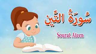 سورة التين - قرآن كريم بالتجويد