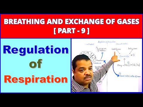 Breathing and Exchange of Gases for NEET | Part -9 | Regulation of Respiration