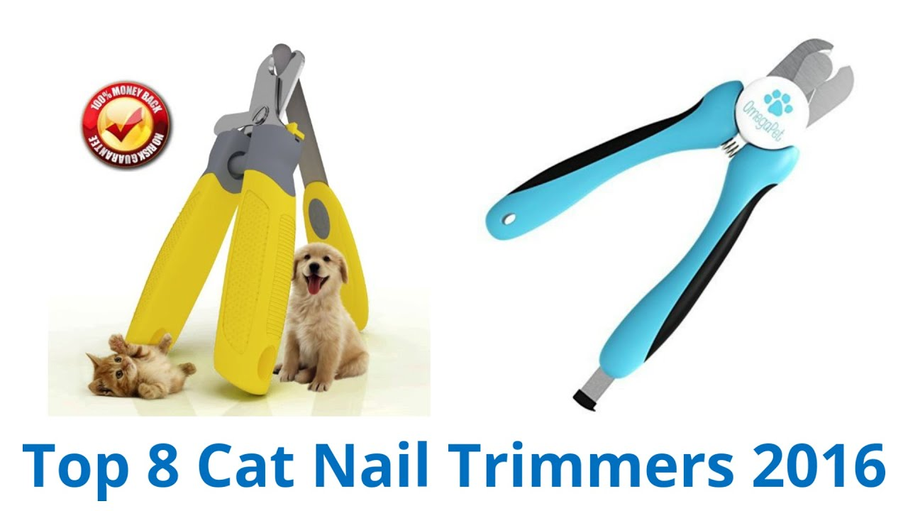 8 Best Cat Nail Trimmers 2016