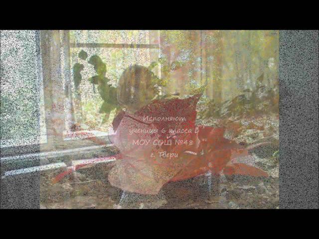 Изображение предпросмотра прочтения – «6 Б» читают произведение «Осыпаются астры в садах....» И.А.Бунина