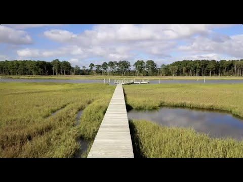 Marsh Island Community Tour
