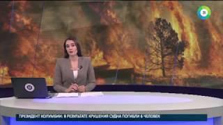 В огне  на востоке России тушат лесные пожары   МИР24