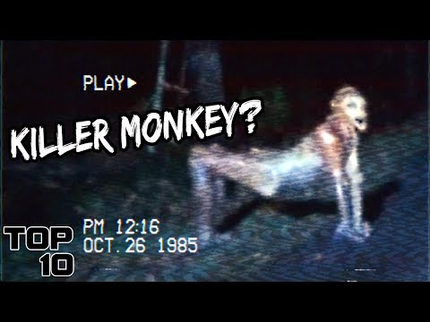 Top 10 Mysterious Creatures Caught On Tape