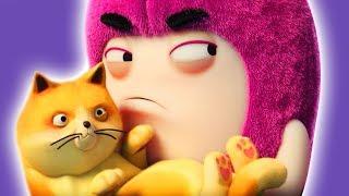 Oddbods | CAT CATASTROPHE | NEW FULL EPISODES | Funny Cartoons For Children | Vidavoo