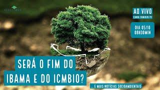 Será  o fim do IBAMA e do ICMBio? E mais notícias socioambientais - VERDE MAR #75