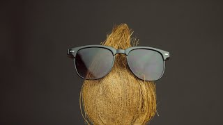 Closeup shot of a brown hairy coconut wearing cool sunglasses - healthy fruit