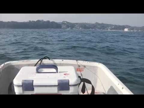 金田湾つ゚の浜浦ボートカレイ釣゚20170330