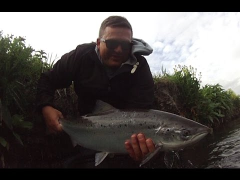 13lb Atlantic Salmon on a Hardy Jet Fly Rod   Cabbage Pool