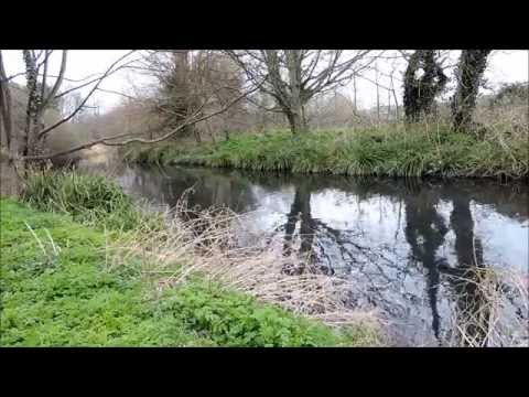 Trouting Time : Fishing The River Wandle