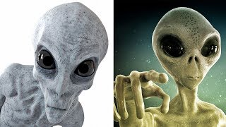 When Are The Aliens Going To Get In Touch? When Are The Aliens Going To Text Back?