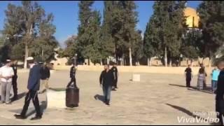 بالفيديو: 250 مستوطناً يقتحمون المسجد الأقصى المبارك