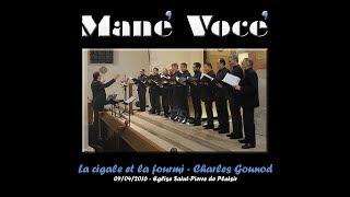 Mane Voce - La cigale et la fourmi - Charles Gounod