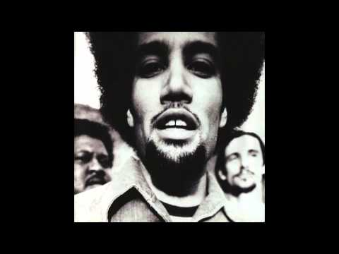 Ben Harper - Roses From My Friends