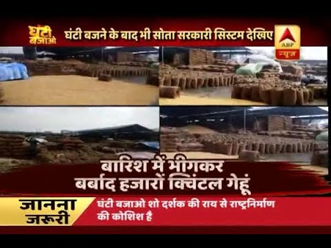 Ghanti Bajao: Wheat sacks destroyed due to heavy rain in Madhya Pradesh's Chhindwara