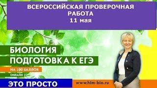 Всероссийкая проверочная работа 2017 по биологии!!!. Разбор демоверсии.Подготовка к ВПР по биологии