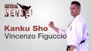 Vincenzo Figuccio teaching kata Kanku Sho - Karate \u0026 Relax June 2013