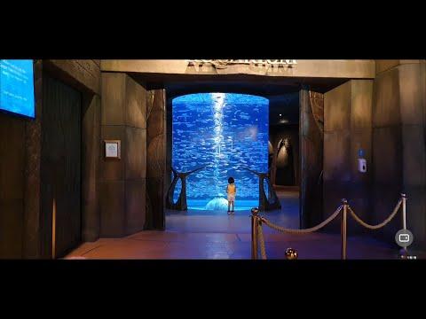The Lost Chambers Aquarium at Atlantis The Palm – DUBAI