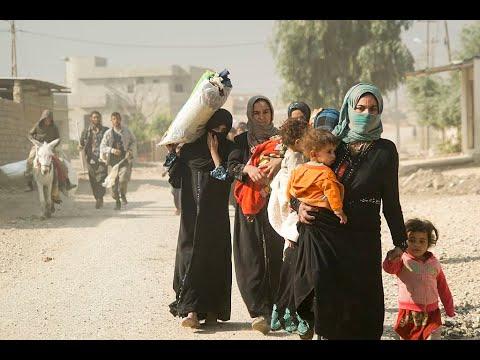 عدد العائدين إلى ديارهم في العراق يساوي عدد النازحين  - نشر قبل 15 ساعة