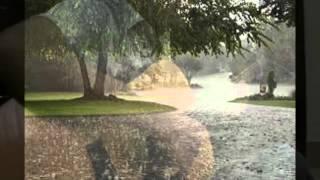 EM VỀ KẺO MƯA - Guitar Solo