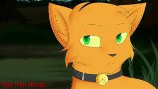 Коты - Воители Огнезвёзд и Песчаная Буря - Болен тобой