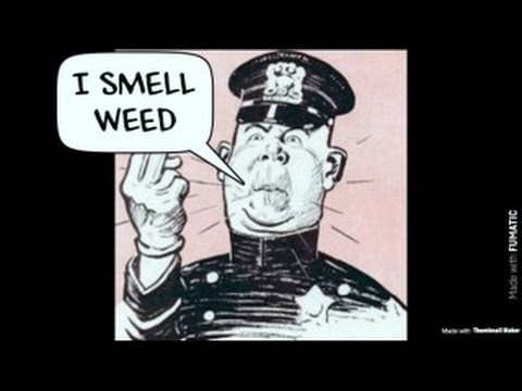 What NOT to do in Alabama when the cops smell weed