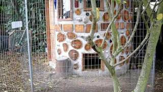 The Chicken Castle