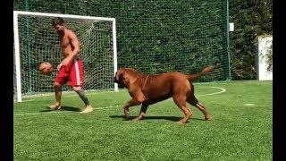 Лео Месси гоняет в футбол со своей собакой