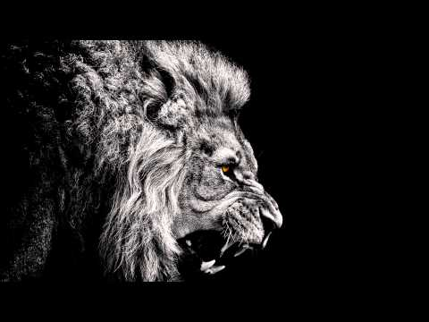 Solo 45, Preditah (Boy Better Know) -  Feed 'em To The Lions