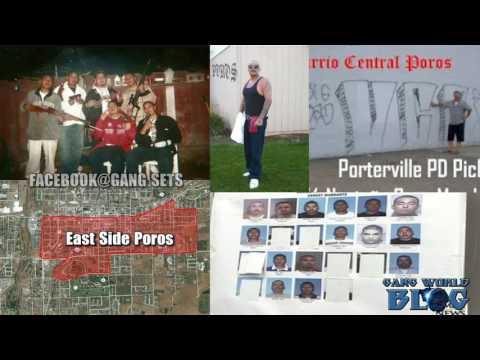 Varrio Poros ESP WSP VCP X4 Gang History (Porterville, CA)