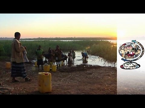 Contaminated Rivers Are Killing The Population of The DRC (2010)