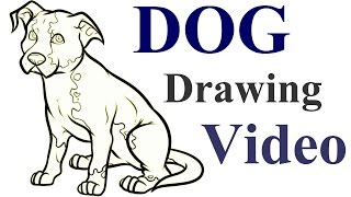 How to Draw a Dog Step by Step Video | Draw a Dog for Kids | Easy Dog Drawing for Beginners