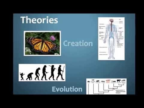 3. Questions, Observations, Hypothesis, Theories, and Laws